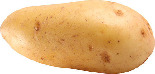 Image of potato on white background.