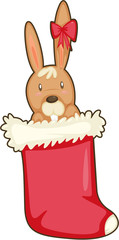 rabbit in a stocking