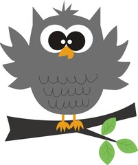 a grey owl sitting on a branch