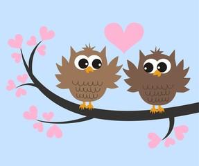 two cute owls in love