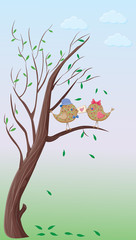 two valentine's day birds on a tree