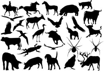 27 siluetas de animales vectorial
