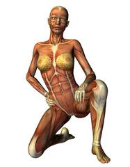 Wall Mural - Muskelaufbau Frau auf einem Knie