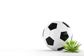 Football & grass