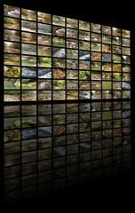 Экологическое телевидение - горные реки