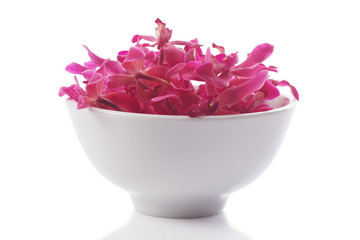 red orchid in  bowl