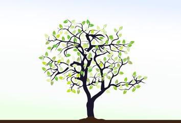 Tree, vector illustration