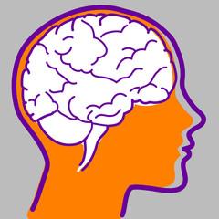 Profilo umano con cervello visibile