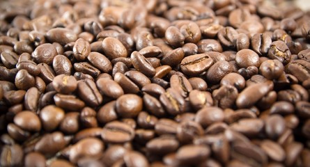 Printed roller blinds Coffee bar Coffee beans
