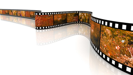 Colored 3d blank films