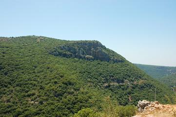 Upper Galilee landscape.