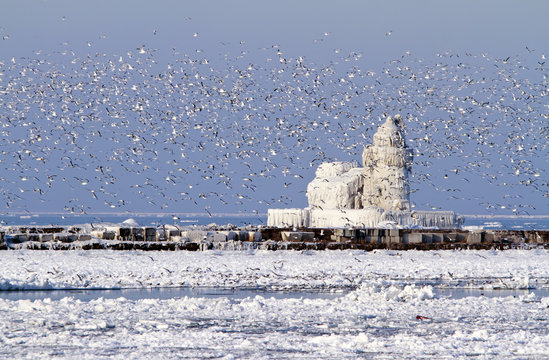 Cleveland Harbor West Pierhead Lighthouse Covered in Ice