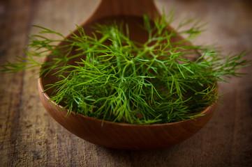 Green fennel in a wooden spoon