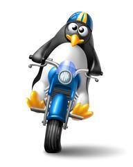 pinguino biker 2