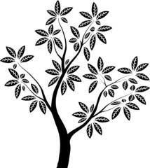 Силуэт дерева с листьями