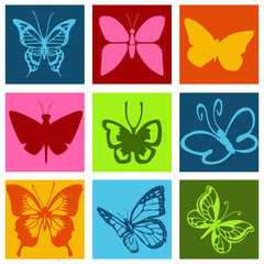 Pictogrammes papillons multicolores