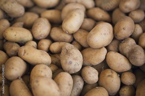 pommes de terre amandine charlotte bintje bf 15 photo libre de droits sur la banque d 39 images. Black Bedroom Furniture Sets. Home Design Ideas