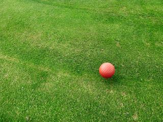 Golfball rot