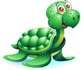 Tartaruga Marina Cartoon-Sea Turtle Cartoon-Vector