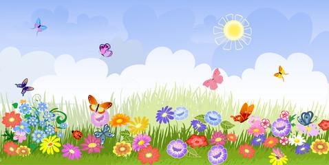 Fotobehang Lieveheersbeestjes flower meadow panorama