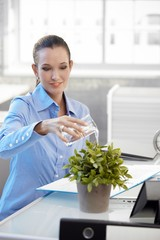 Smiling office girl watering plant