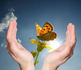 unsere Natur schützen...