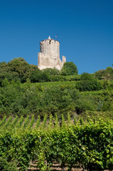 Kaysersberg Castle, Alsace