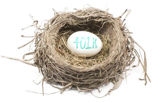 Bird's Nest with 401K Egg