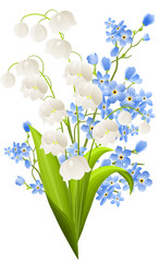 Lilies of the valley and blue flowers isolated on white