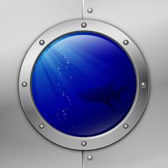 porthole. shark. vector illustration. eps10