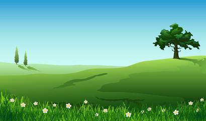 Spring. Summer.Rural landscape, nature background
