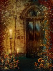 Drzwi do starego domu z kolorowym bluszczem