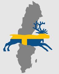 Schwedisches Rentier