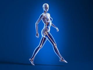 Anatomy walking woman with skeleton X-ray.