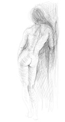 Woman nude silhouettes / realistic sketch (not auto-traced)