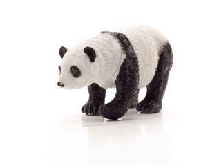 toy panda bear isolated