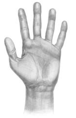 Illustration of a hand symbol