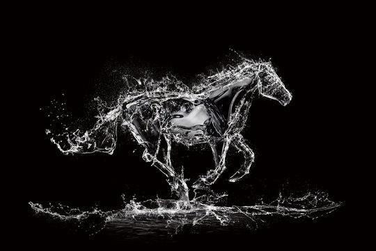 water horse black