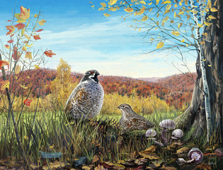 Two birds in the autumn woods