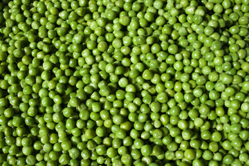 Peas Medium Close-Up