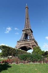 View of the Eiffel Tower from Champ de Mars