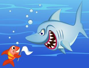 Shark and tiny fish make peace