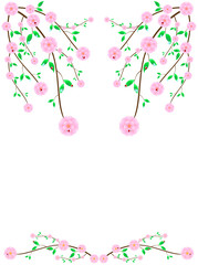 Frame of wild pink cherry