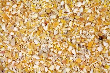 Cracked corn bird seed