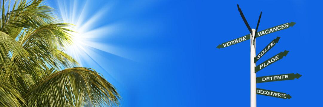 Bannière palmier, soleil, vacances