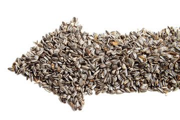 sunflower seeds are laid out in the form of arrows.