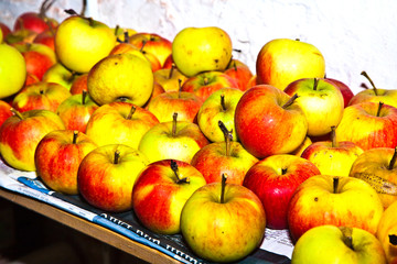 apples are stored in the cellar