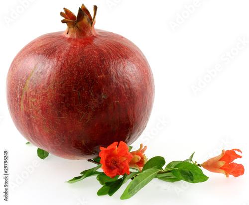 grenade fruit fleurs et feuilles photo libre de droits sur la banque d 39 images. Black Bedroom Furniture Sets. Home Design Ideas