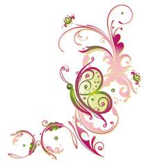 Ranke, flora, Blumen, Blüten, Schmetterling, pink, grün