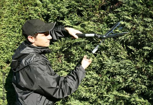 Jardinier p pini riste paysagiste taille avec une for Tarif jardinier paysagiste